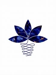 Lotus Prin