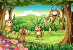 Monkeys pl
