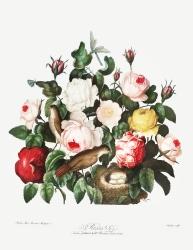 Roses (180