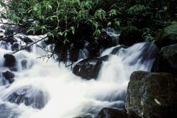 A Waterfal